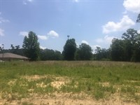 Commercial Lot In McComb MS : McComb : Pike County : Mississippi
