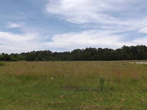 Commercial Lot 1 In Marion County : Columbia : Marion County : Mississippi