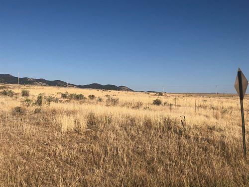 Roy Lots 1-5,8 Blk 32 : Silver Cliff : Custer County County : Colorado