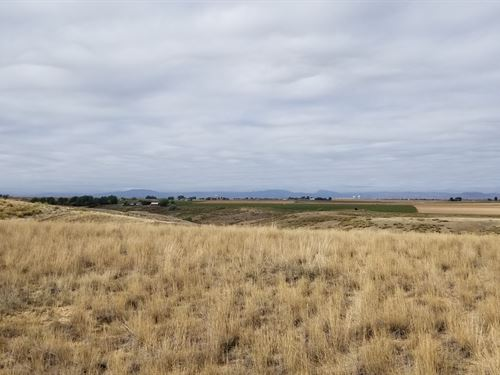 Mountain View Windsor Acreage : Windsor : Weld County : Colorado
