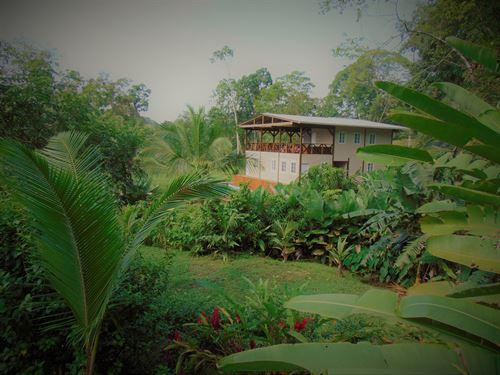 Tropical Lodge B&B Bluff Beach : Bocas Del Toro : Panama