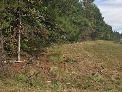 Potential Commerical Mountain Land : Jasper : Pickens County : Georgia