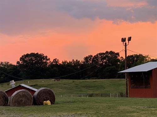 Equestrian Potential Dream Property : Kimberly : Jefferson County : Alabama