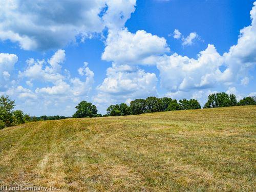 8 Acre Commercial Site : Pauline : Spartanburg County : South Carolina