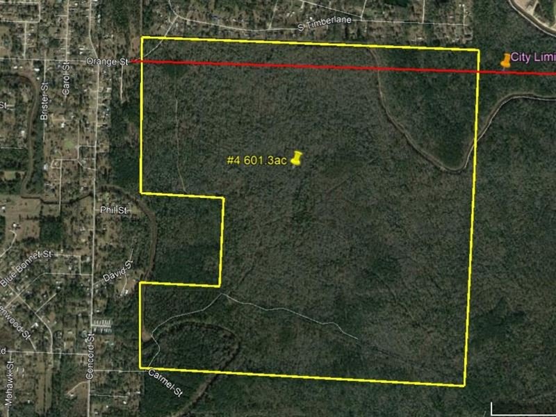 601 Acres Forested Development : Vidor : Orange County : Texas
