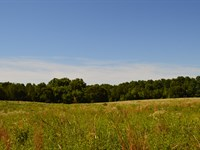 8.6 Acres of Cleared Land : Greer : Spartanburg County : South Carolina