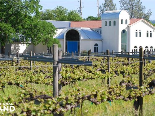 Beautiful Winery And Vineyard : Chico : Butte County : California