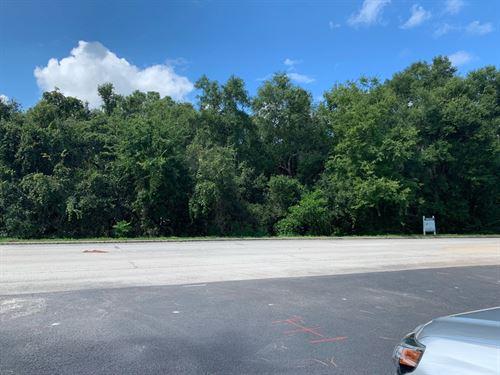 5.96 Acres On Old Highway 441 : Mount Dora : Orange County : Florida