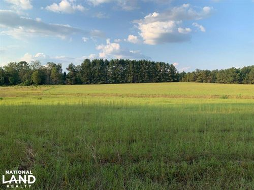 Gently Rolling Pasture/Development : Quitman : Clarke County : Mississippi