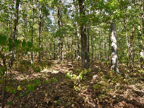 Vacant Land Near Interstate 40 : Waverly : Humphreys County : Tennessee