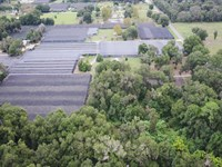 Potential Industrial Hemp Operation : Pierson : Volusia County : Florida