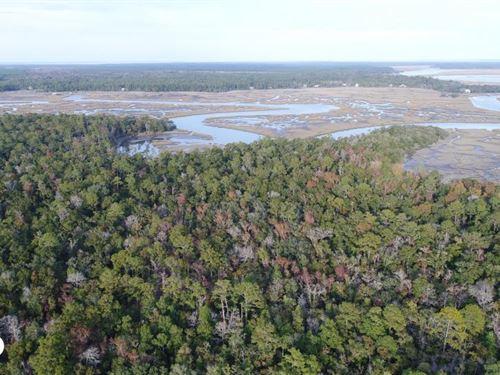 London Hill Bluff Development Tract : Woodbine : Camden County : Georgia
