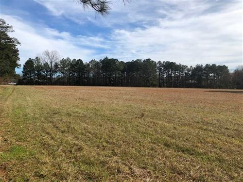 25 Acres With Frontage on Old : Flowood : Rankin County : Mississippi
