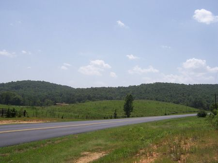 125 Acres - Great Location For Dev. : Odenville : Saint Clair County : Alabama