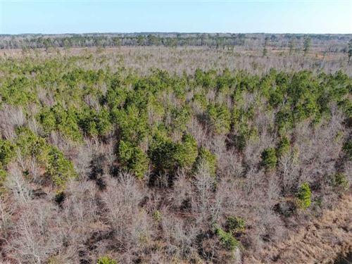 79 Acres of Development Land : Lumberton : Robeson County : North Carolina