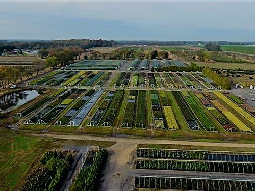 Brock Farms Wholesale Nursery : Bridgeton : Cumberland County : New Jersey