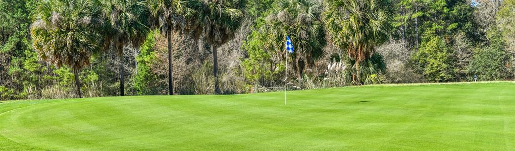 Golf Course for Sale Turn Key : Bonifay : Holmes County : Florida