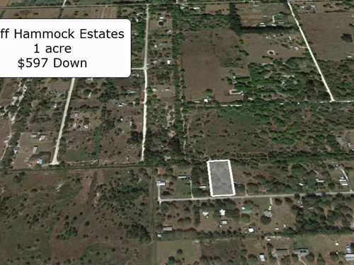1 Acre Lot Partially Cleared : Lorida : Highlands County : Florida