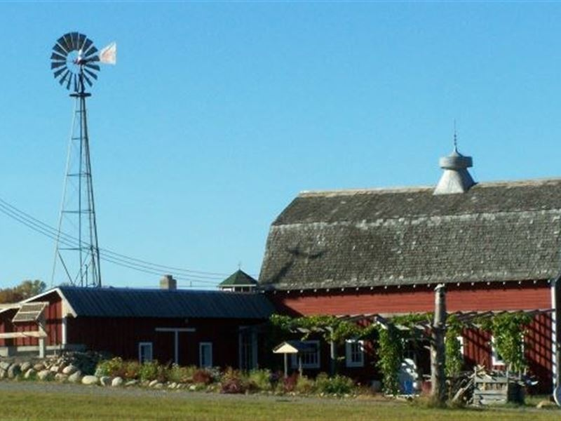 Turnkey Vineyard & Winery Mille : Isle : Mille Lacs County : Minnesota
