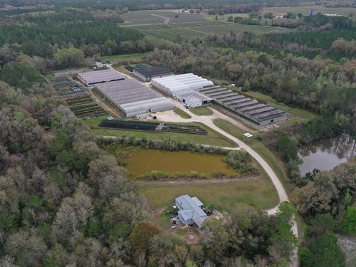 Alachua County Propagation Nursery : Gainesville : Alachua County : Florida