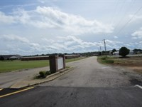6.96 Acres In Tishomingo County : Belmont : Tishomingo County : Mississippi
