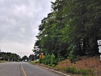Commercial Acreage South Carolina : Cheraw : Chesterfield County : South Carolina