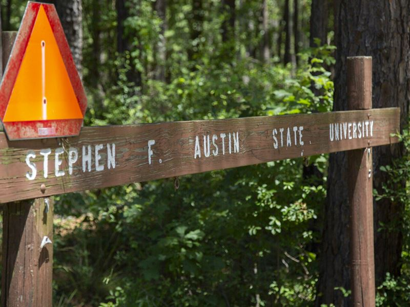 Piney Woods Conservation Center : Broaddus : San Augustine County : Texas