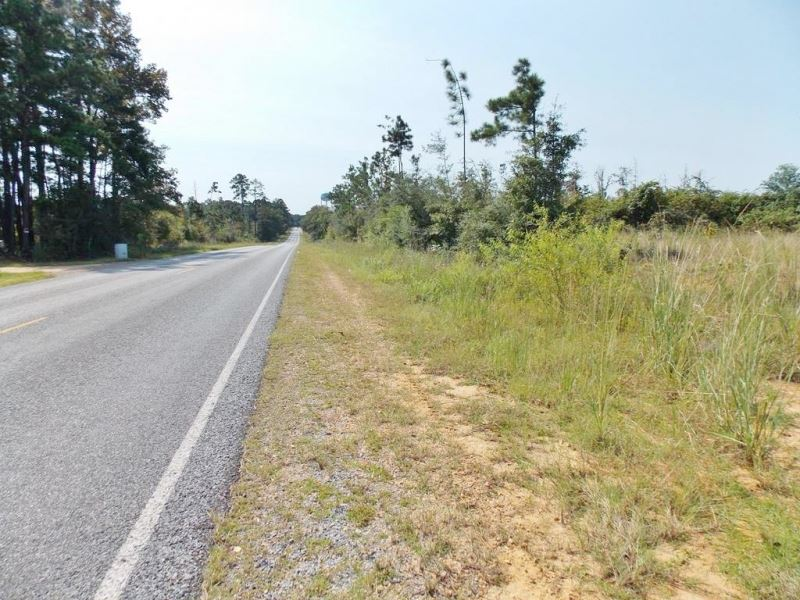 125 Acres-Old Industrial Rd, Adams : McComb : Pike County : Mississippi