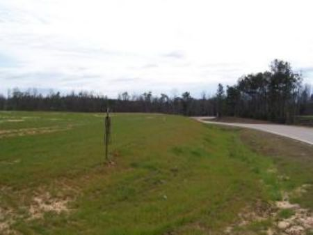 33.50 Acres : Poplarville : Pearl River County : Mississippi