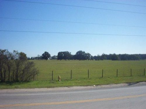 Bellehaven - 225 Acres : Belleview : Marion County : Florida