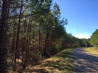 6.5 Ac. Near Interstate Exit : Wesson : Lincoln County : Mississippi