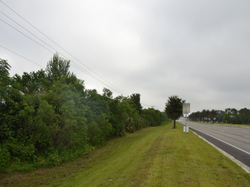 Cutler Ridge 75 Acres : Haines City : Polk County : Florida