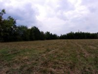 8.7 M/L Acres In City Limits : Tahlequah : Cherokee County : Oklahoma