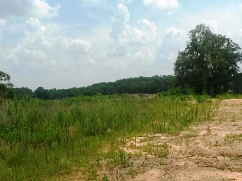 80 +/- Acres For Commerical Use : Troy : Pike County : Alabama