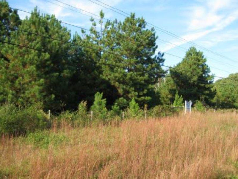 Long-term Investment Tract : Covington : Newton County : Georgia
