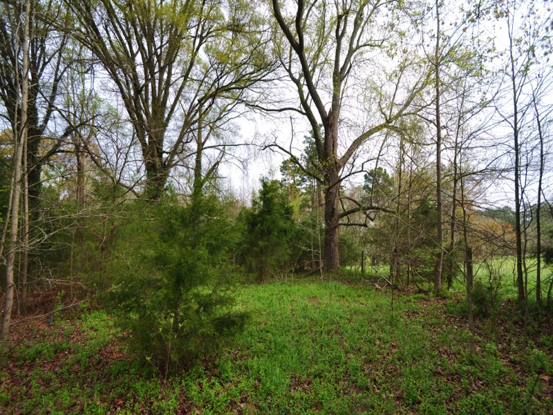 2 Acres Road Frontage On 64 Hwy : Siler City : Chatham County : North Carolina